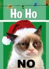 1a69359f28c0274c5ec8fdf474ee241c_grumpy-cat-christmas-695