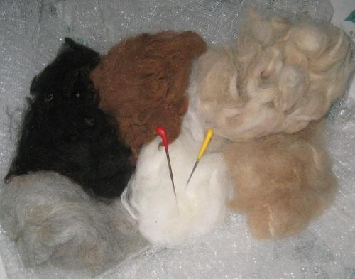 free-wool-0021